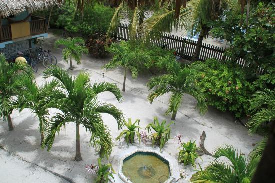 OASI: Jardin avec Barbecue à droite