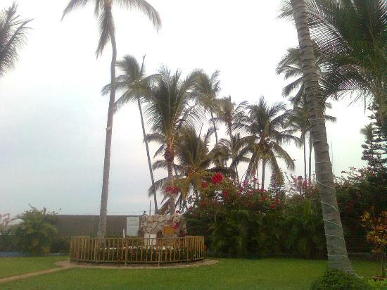 Las Cabanas del Capitan: desde la alberca