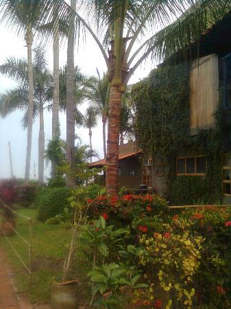Las Cabanas del Capitan: Los jardines