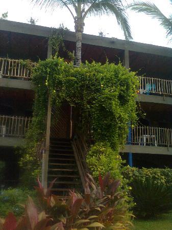 Las Cabanas del Capitan: las habitaciones