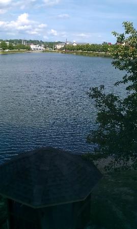 Hilton Garden Inn Evansville: lake outside our window