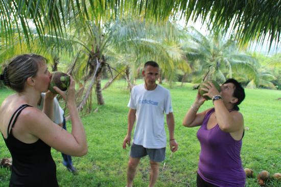 Casa del Caballo Blanco: dégustation Coconuts