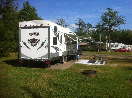 Mandeville, LA: Campsite - Alot of room