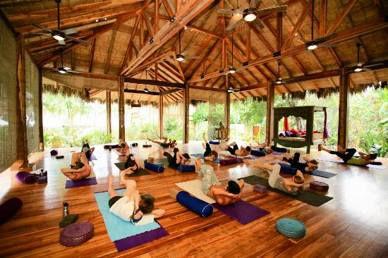 Vajra Sol Yoga Adventures: Beachfront open-air Yoga class (group or private)
