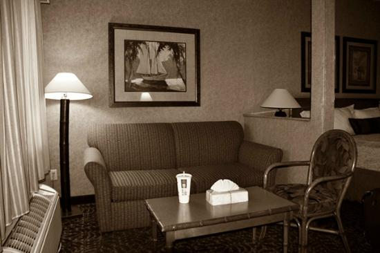 BEST WESTERN PLUS Park Place Inn - Mini Suites: Sitting Area