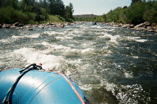 Buffalo Joe's Whitewater Rafting : Great day to raft! More exciting rapids ahead!