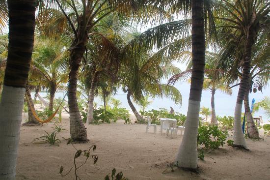 Bungalos Costa del Sol: vers la plage