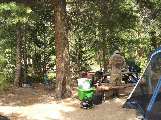Estes Park Campground at East Portal : Campsite A01 from driveway