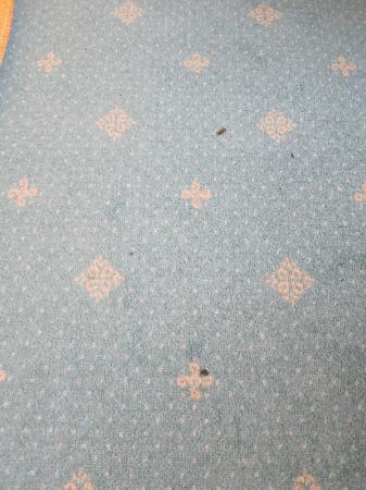 Berghotel Ilsenburg: Brandlöcher im Teppich