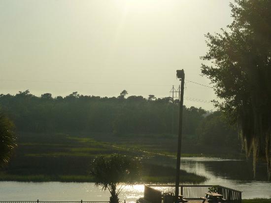 Creekside Lands Inn : marsh