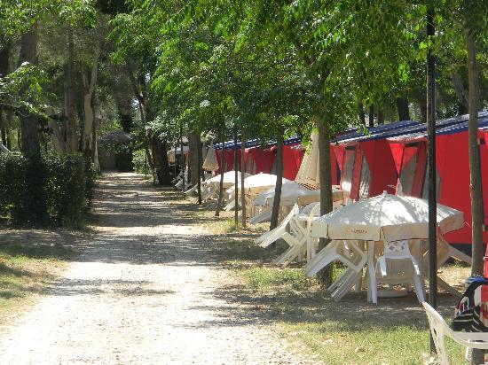 Campingvillage Le Capanne: tende