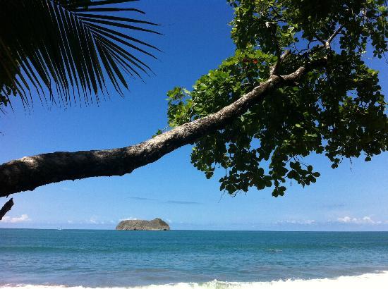 Arenas del Mar Beachfront & Rainforest Resort : Sitting on my sunchair