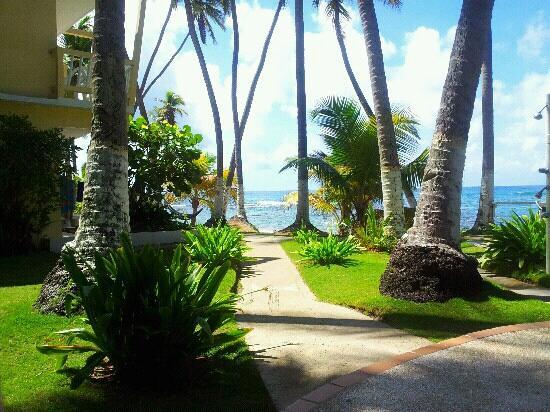 Caribe Playa Beach Resort: Patio!!