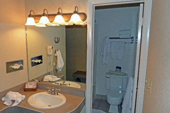 Antler Inn: Bathroom