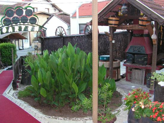 Hotel Garten : the garden