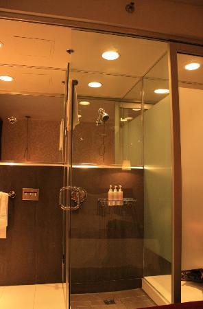 Drake Hotel Toronto: The bathroom