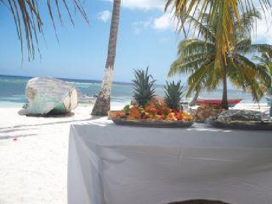 Tropical Paradise Excursions : getlstd_property_photo