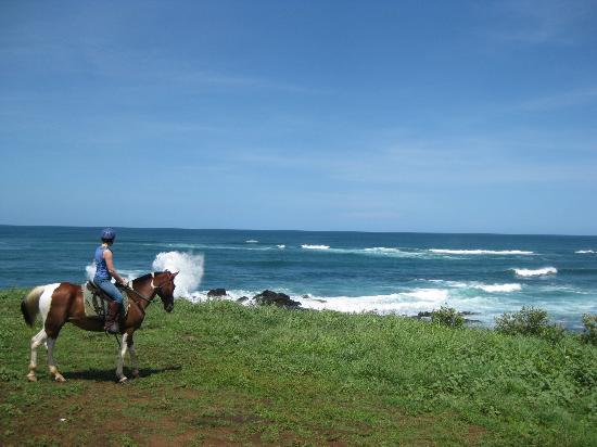 Paradise Riding - Horseback Tours: Paradise Riding