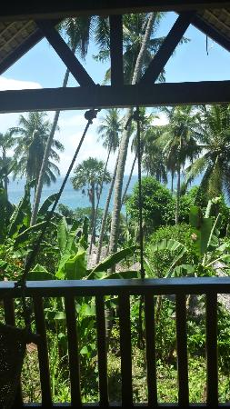Coco Beach Resort: View from Banana Cottage 2