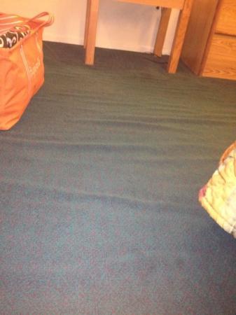 Super 8 Alexandria: carpet not glued down