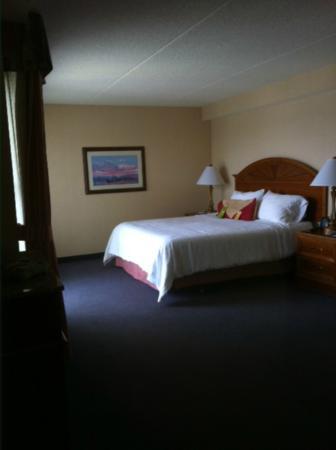 Hilton Garden Inn Kent Island: Bed