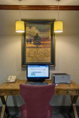 Baymont Inn & Suites Denver West/Federal Center: Business Center