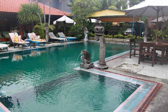 Stana Puri Gopa Hotel : Pool view