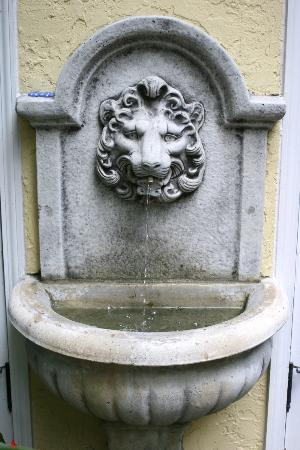 Grandview Gardens Bed & Breakfast: Lion Fountain