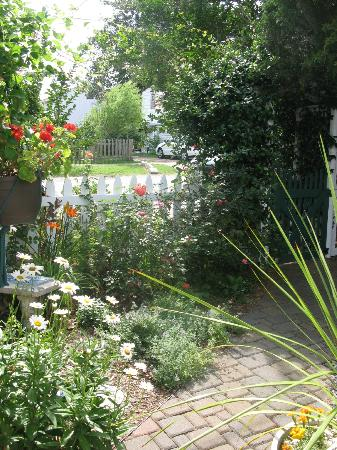Barclay Cottage Bed and Breakfast: garden