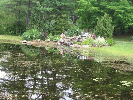 Rosewood Country Inn: Pond area