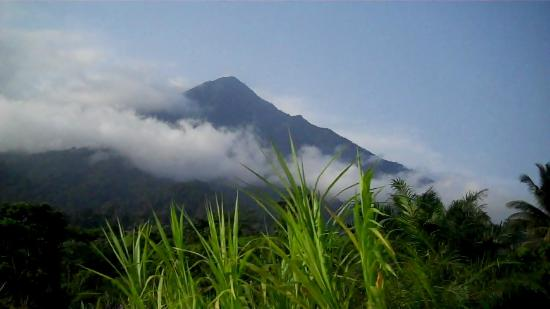 Camerún: Mt.Cameroon, Republic of Cameroon