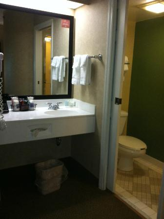 Sleep Inn: sink/vanity are separate from toilet/shower