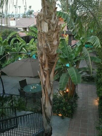Hotel California: view from balcony