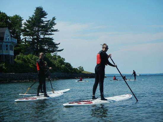 Acadia Stand Up Paddleboarding : Comfortable, modern wet suits
