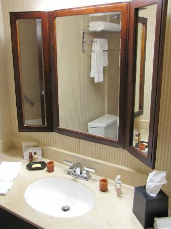 Sheraton Fort Worth Downtown Hotel: Bathroom