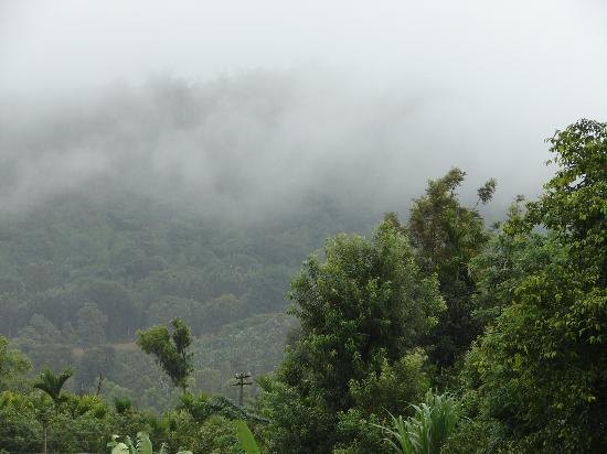 Casa Coorg Homestay: Clouds hanging low