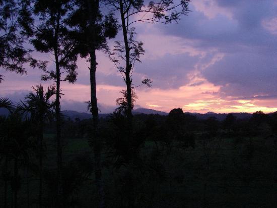 Casa Coorg Homestay : Evening Sky