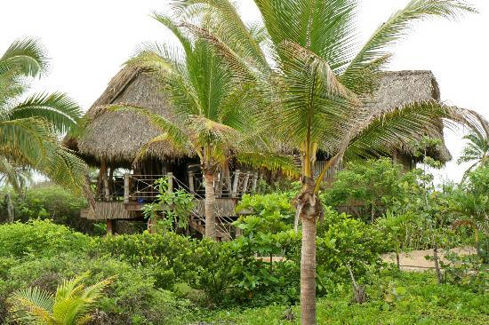 Playa Viva : The Private Casita
