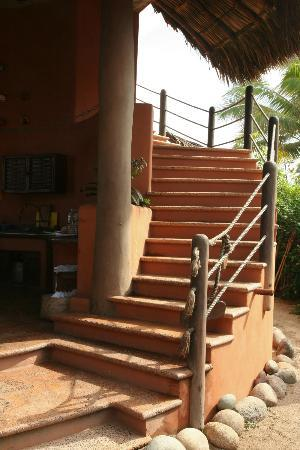 Playa Viva: Stairs leading to the yoga area