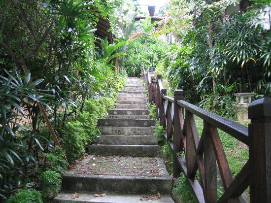Nongsa Village: Steps to beach