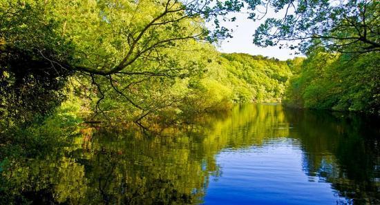 Scorton, UK: Forest of Bowland