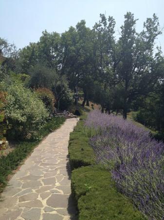 Mougins, France: Beautiful grounds
