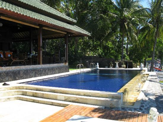 Villa Alba Dive Resort: Pool