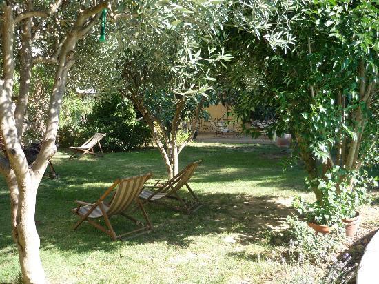 Habanera : le jardin