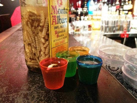 Cactus Republic: Tequila Worm Shots from the exotic Mexico