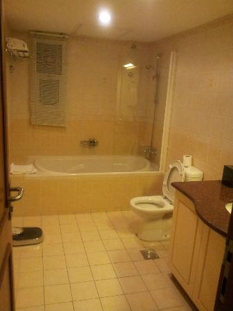 Al Nahda Resort & Spa : Bathroom