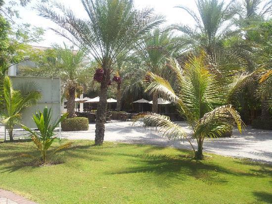 Al Nahda Resort & Spa: around the hotel 