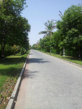 Al Nahda Resort & Spa: walkways between room and coffee shop 