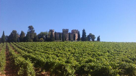 Hostellerie Chateau des Fines Roches: the castle