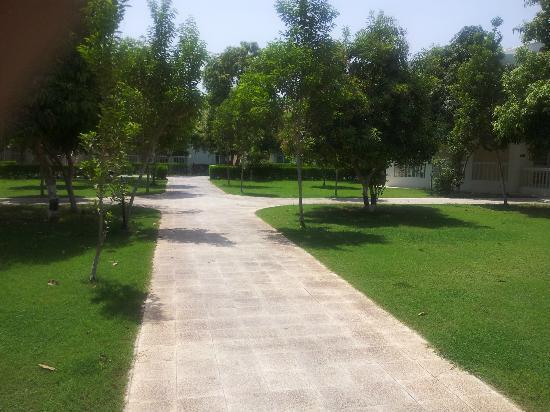 Al Nahda Resort & Spa: walkway 